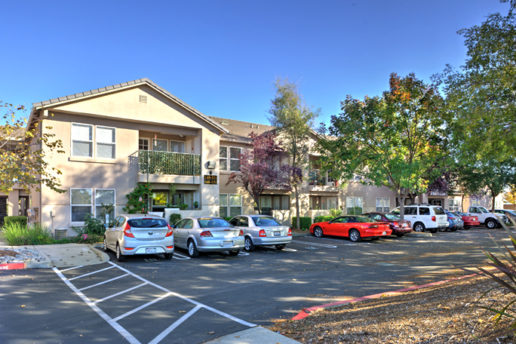 Parking lot with 10 cars, crosswalk, trees, and exterior of building